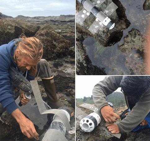 ocean_acidification