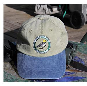 OBA cap with blue bill