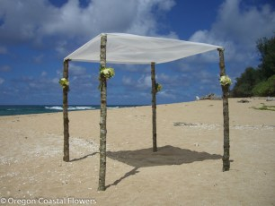 Rustic Wedding Chuppah