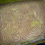 kilchis pumpkin patch corn maze