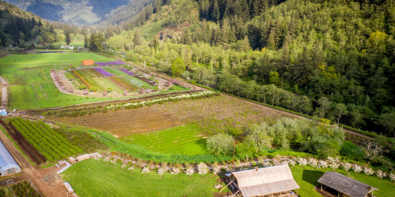 10.04.21 Hydrangea Ranch Recreational Events Center on the Oregon Coast