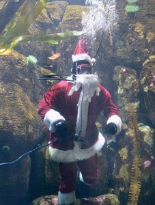 Scuba Santa photo by Oregon Coast Aquar
