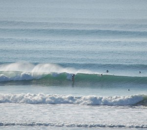many surfing
