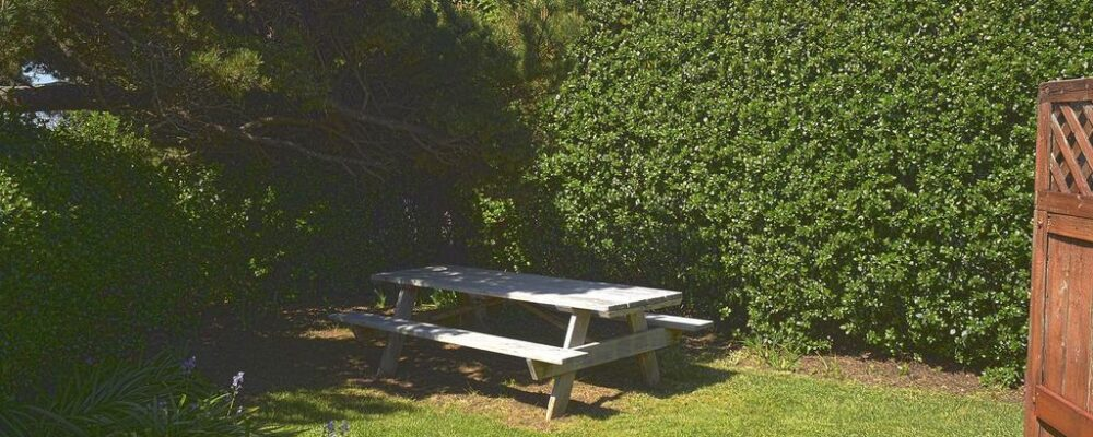 Sea Bella Oregon Coast Vacation Rental - Picnic anyone?