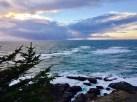 Cape Arago Viewpoint