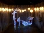 Christmas Bandon