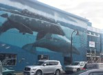 Whale Mural in Newport