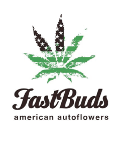 FAST BUDS AUTO FLOWER
