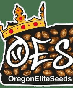 Oregon Elite Seeds