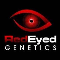 RED EYE GENETICS