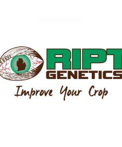 RIPT GENETICS