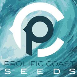 Cannabis Seeds | Oregon Elite Seeds | Top Ranked Cannabis
