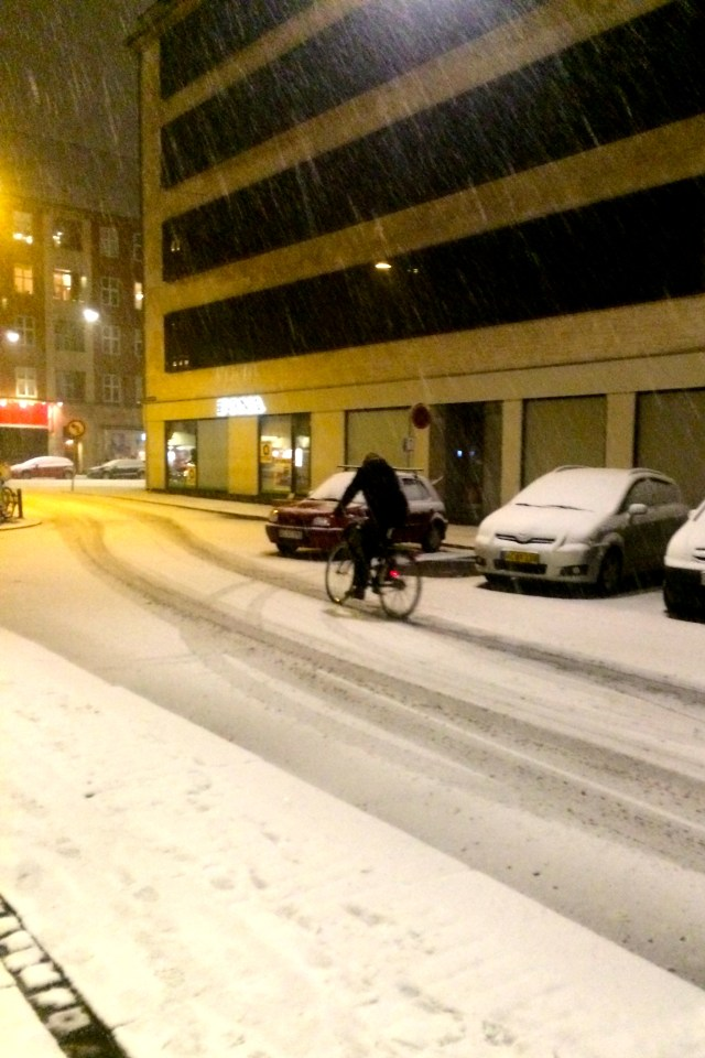 Riding bikes in the snow - I have seen little that stops the Danes