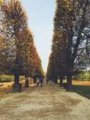 Kongens Have - the Kings Garden in the middle of Copenhagen in Fall