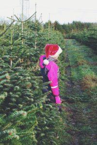 Rosendal Julemarked, Ålsgårde Denmark | Where to Find Christmas in Denmark via Oregon Girl Around the World