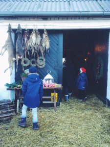 Where to Find Christmas in Denmark   Try a tree farm and julemarked via Oregon Girl Around the World