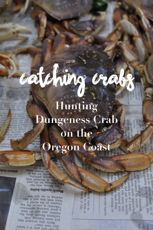 Hunting for Dungeness Crab on the Oregon Coast | Tips, tricks and inspiration for a day out catching crabs | Oregon Girl Around the World