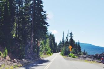 Old McKenzie Highway 242, Oregon