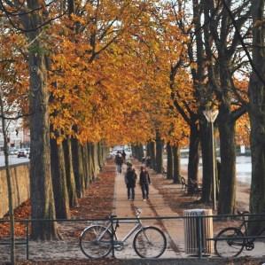 Copenhagen color along the lakes
