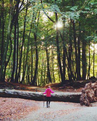 Hiking rambling ruegen deutschland