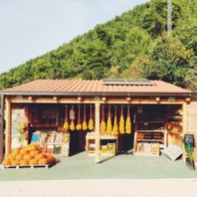We bought some oranges, lavender honey and sugared orange peels from this charming stand