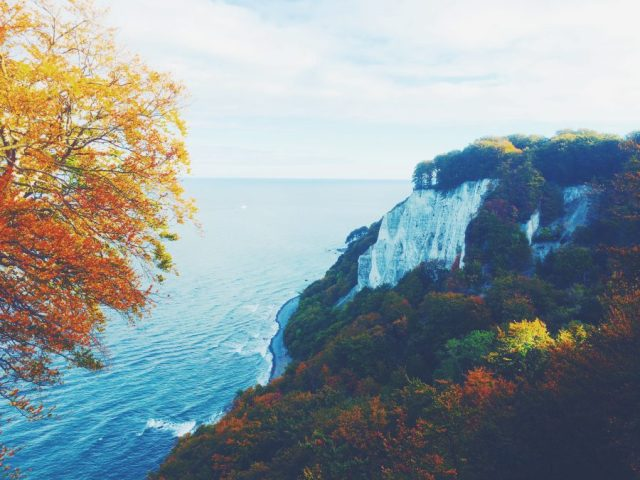 Fall Autumn trees whilk chalk cliffs Ruegen Germany