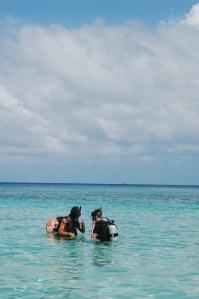 Take your kids to the Caribbean   Roatan Honduras   Oregon Girl Around the World