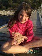 Explore the slow life in Denmark   Gem of the Danish Riviera   Hornbaek Denmark via Oregon Girl Around the World