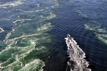 Boat racing through World's Wildest Whirlpools | Saltstraumen near Bodo Norway | Oregon Girl Around the World