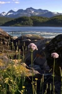 World's Wildest Whirlpools | Saltstraumen near Bodo Norway | Oregon Girl Around the World