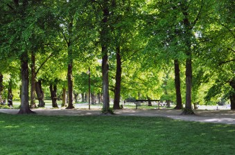Green Tree Lined Paths at Søndermarken Park in Frederiksberg | Step Down into the Cisterns Copenhagen's Underground Art Space | Oregon Girl Around the World