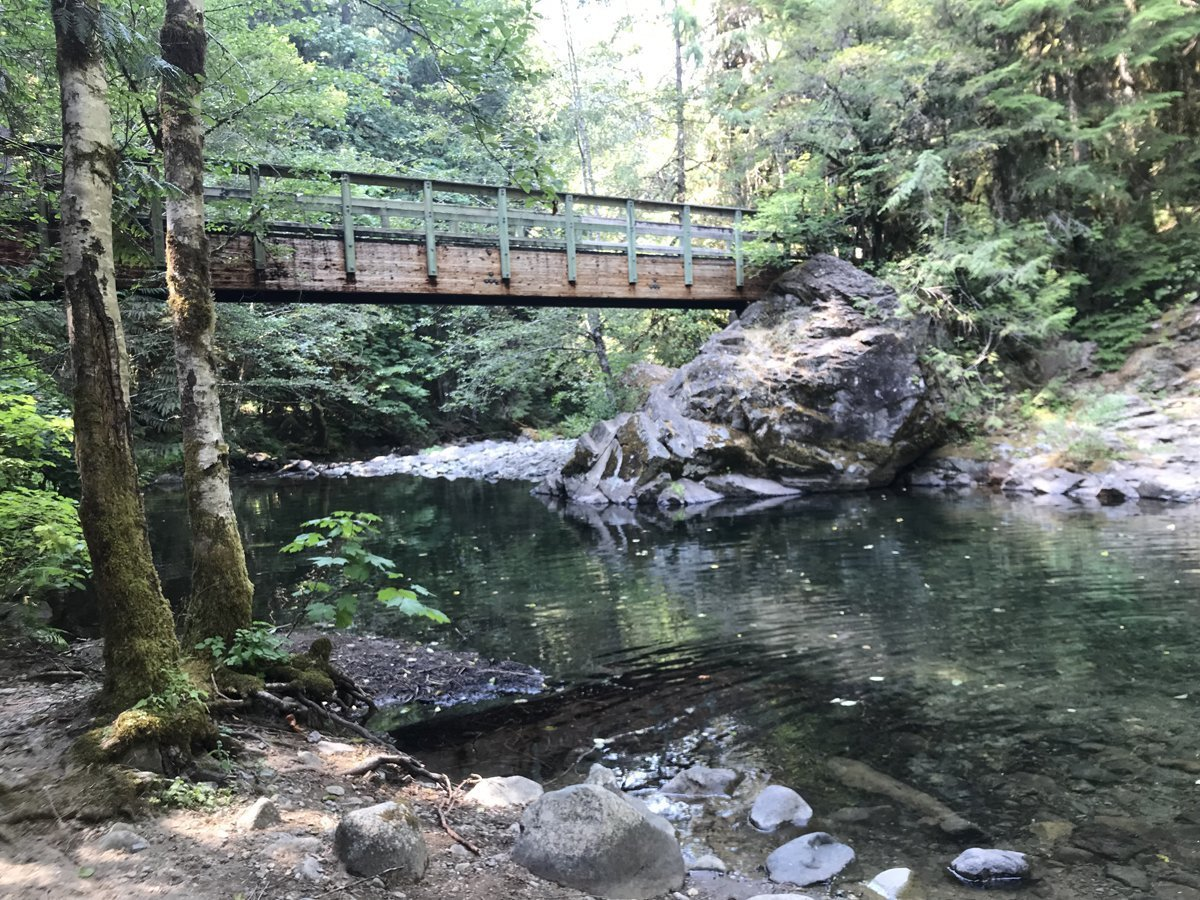 Lund Park Campground and Brice Creek Trail and bridge over creek