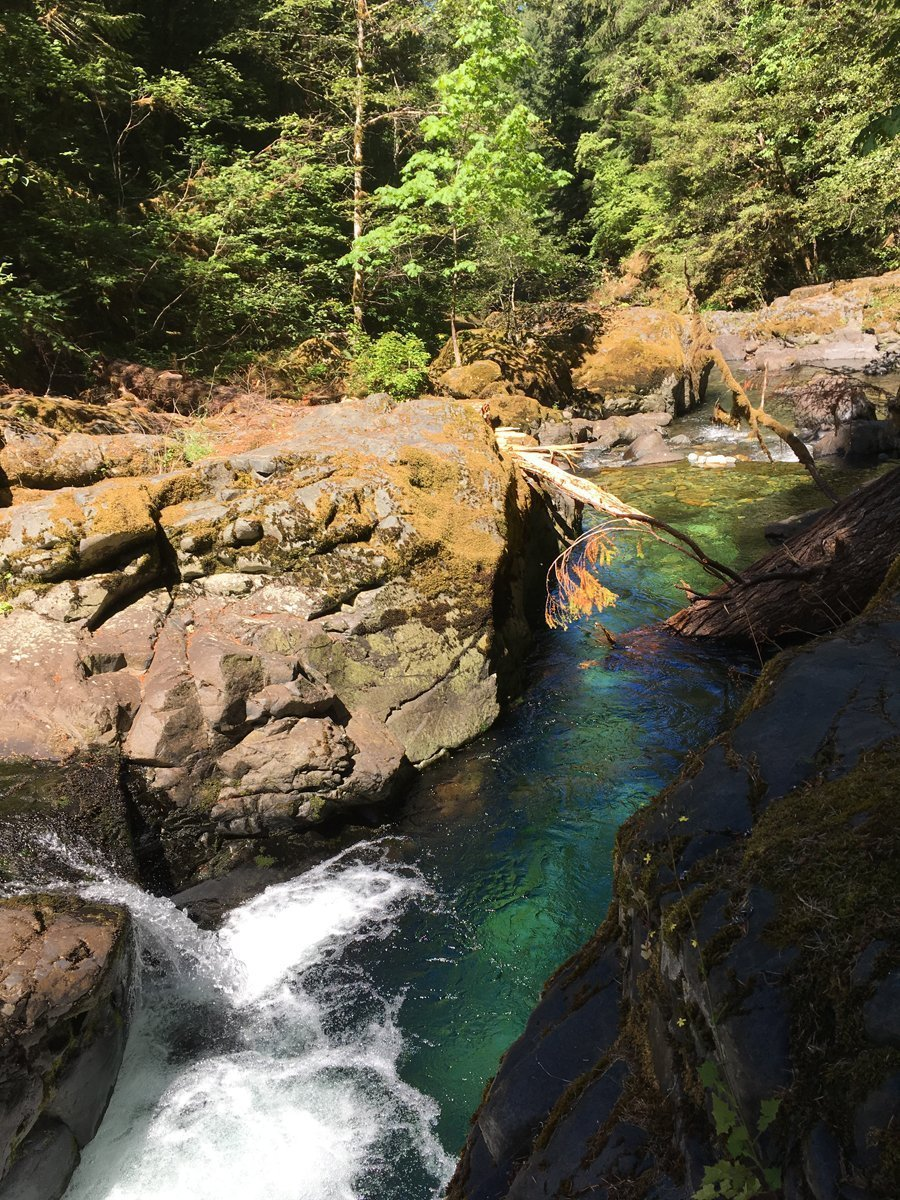 Deep blue water in Brice Creek near Trestle Creek