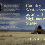 Country Well-Known as an Old Nightmare's Stable, by Tiel Aisha Ansari: Now ready for pre-order