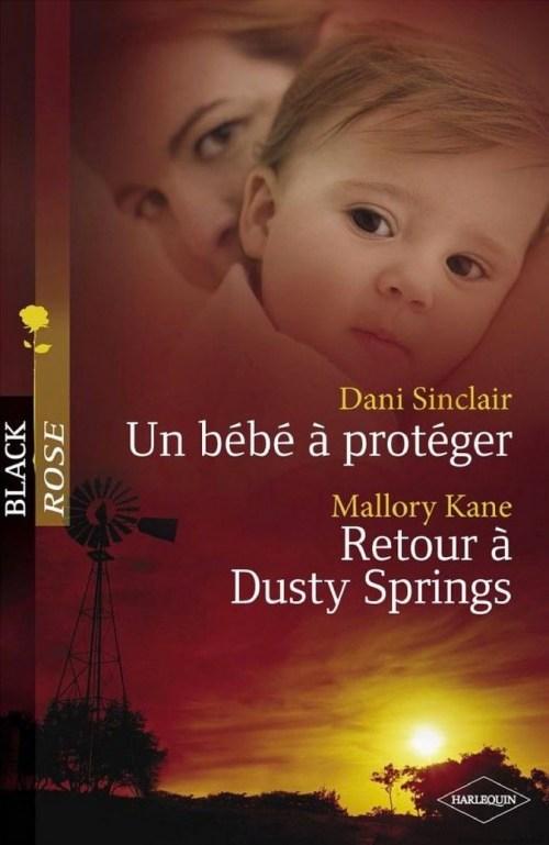 Dani Sinclair, Un bébé à protéger, 2009, couverture
