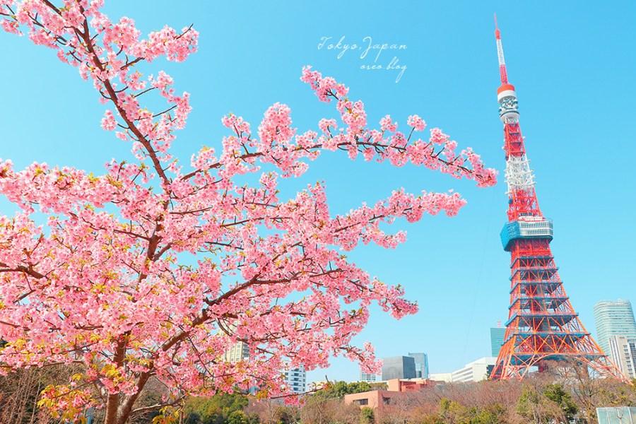 東京賞櫻 增上寺、芝公園櫻之東京鐵塔~很有日劇感的春日場景~一棵足矣