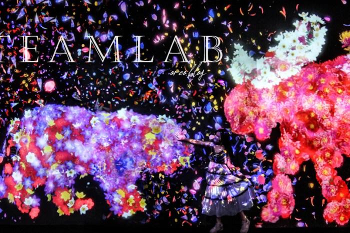 日本teamlab來台 未來遊樂園10/8開展 沉浸式夢幻光影 內容搶先看 (附拍照注意事項)