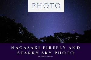 Nagasaki-firefly-and-starry-sky-photo