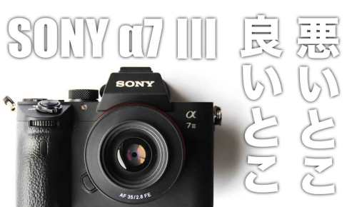 sony-a7-review-1-year