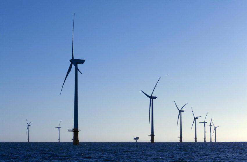 Managing Coastal Environments: Organizational Responses to Uncertainty