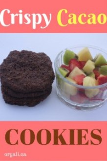 These are the most amazing cookies I've ever eaten. Crispy, chocolate-y, and mildly sweet. Make today these cacao cookies! You will be VERY happy you did!