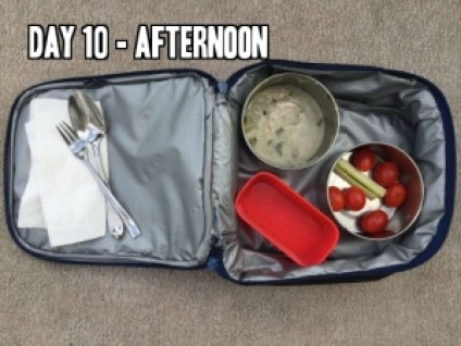 Day 10 afternoon school lunch idea