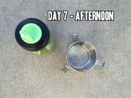 Day 7 afternoon school lunch idea