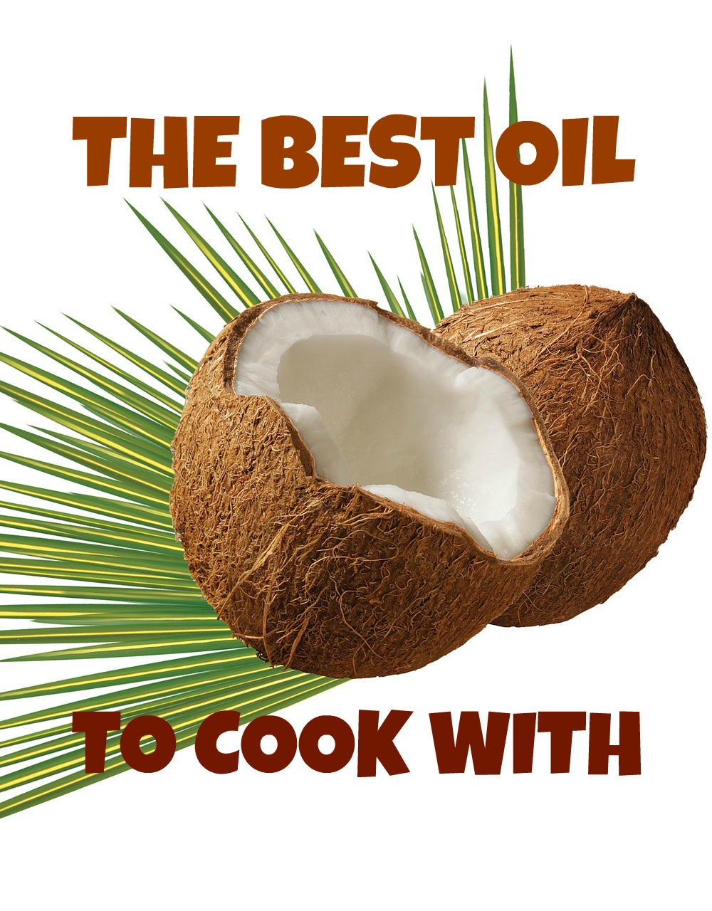 My favourite oil to cook with: coconut oil