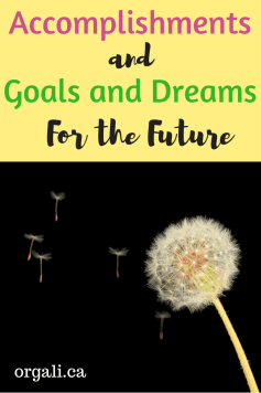 Dreams and Plans and Goals for 2017