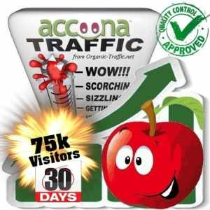 accoona search traffic visitors 30days 75k