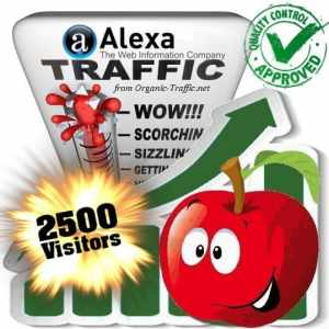 alexa search traffic visitors 2500