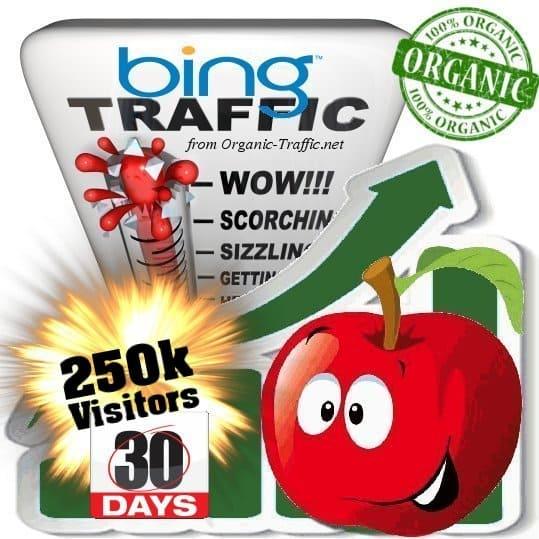 buy 250k bing organic traffic visitors 30days