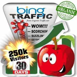 buy 250k bing organic traffic visitors 30days