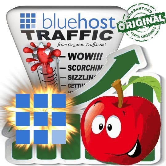 Buy Bluehost.com Web Traffic